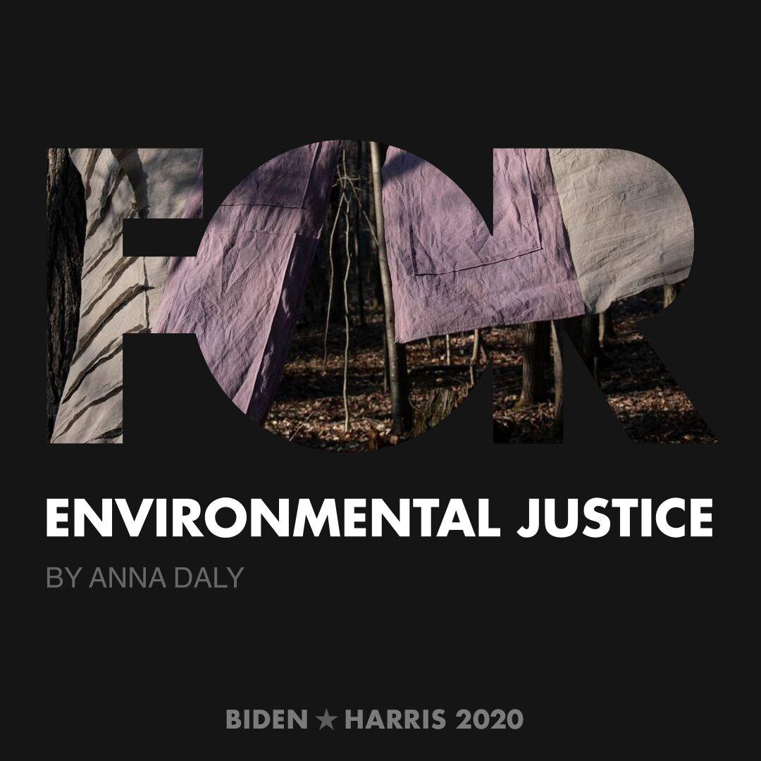 CreativesForBiden.org - Environmental Justice artwork by Anna Daly