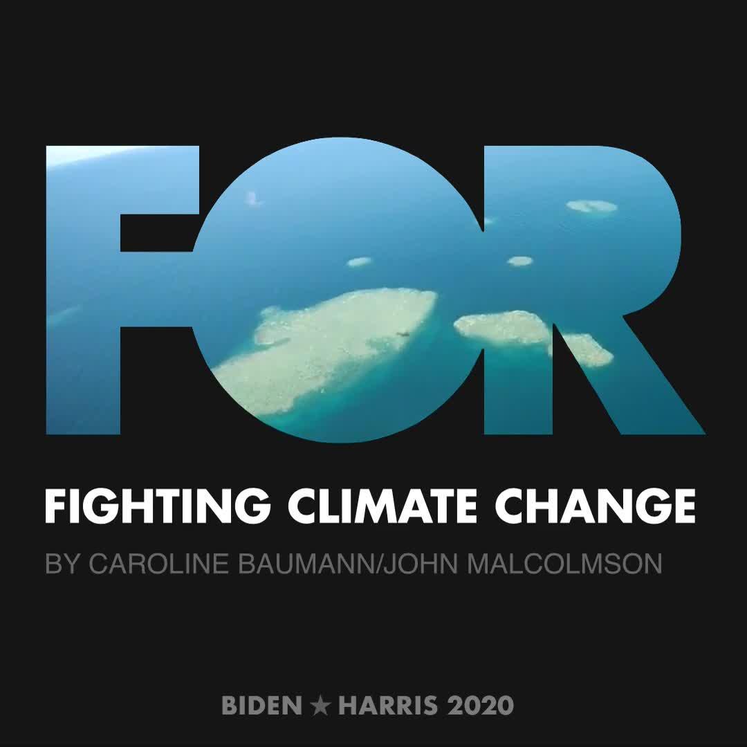 CreativesForBiden.org - Fighting Climate Change artwork by Caroline Baumann/John Malcolmson