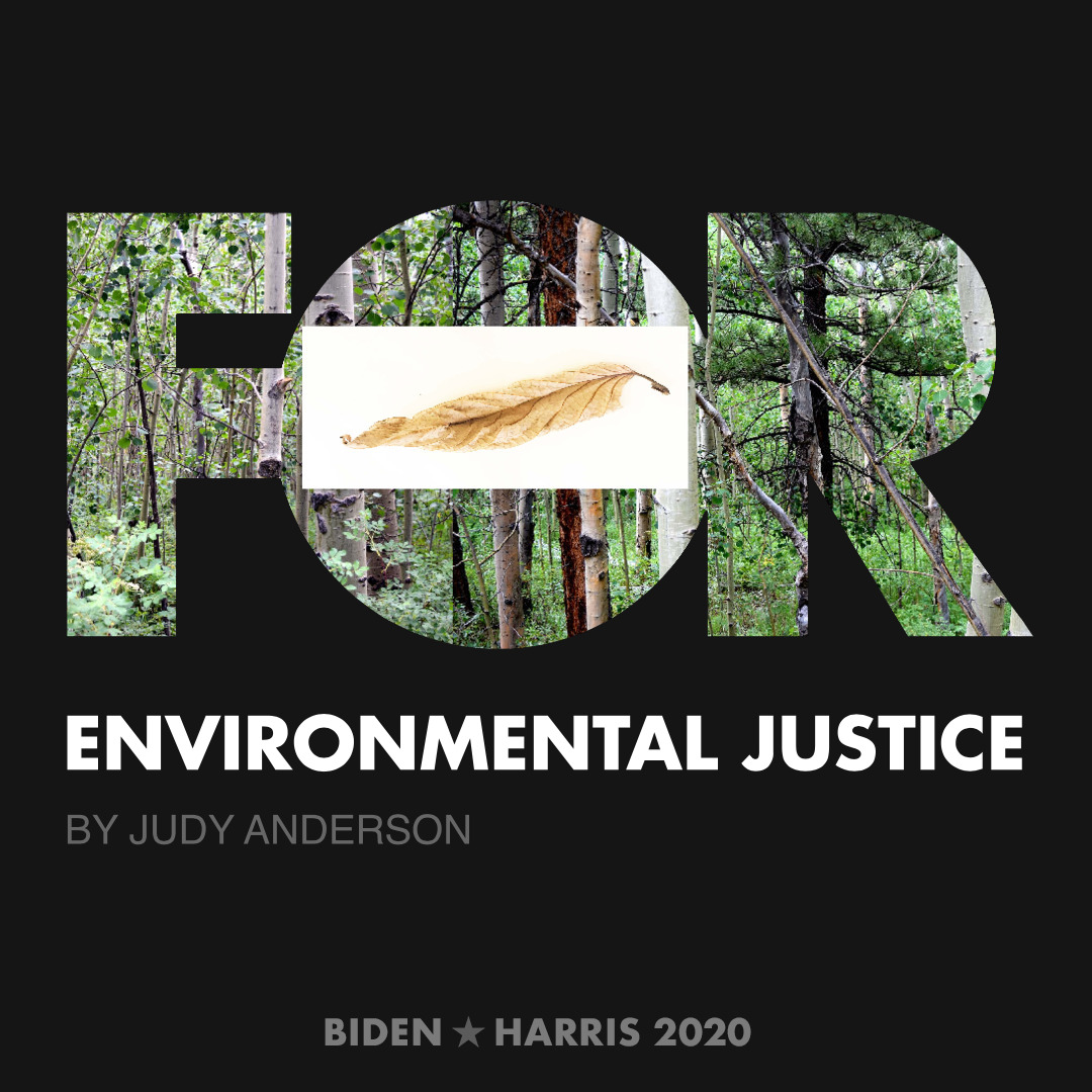CreativesForBiden.org - Environmental Justice artwork by Judy Anderson