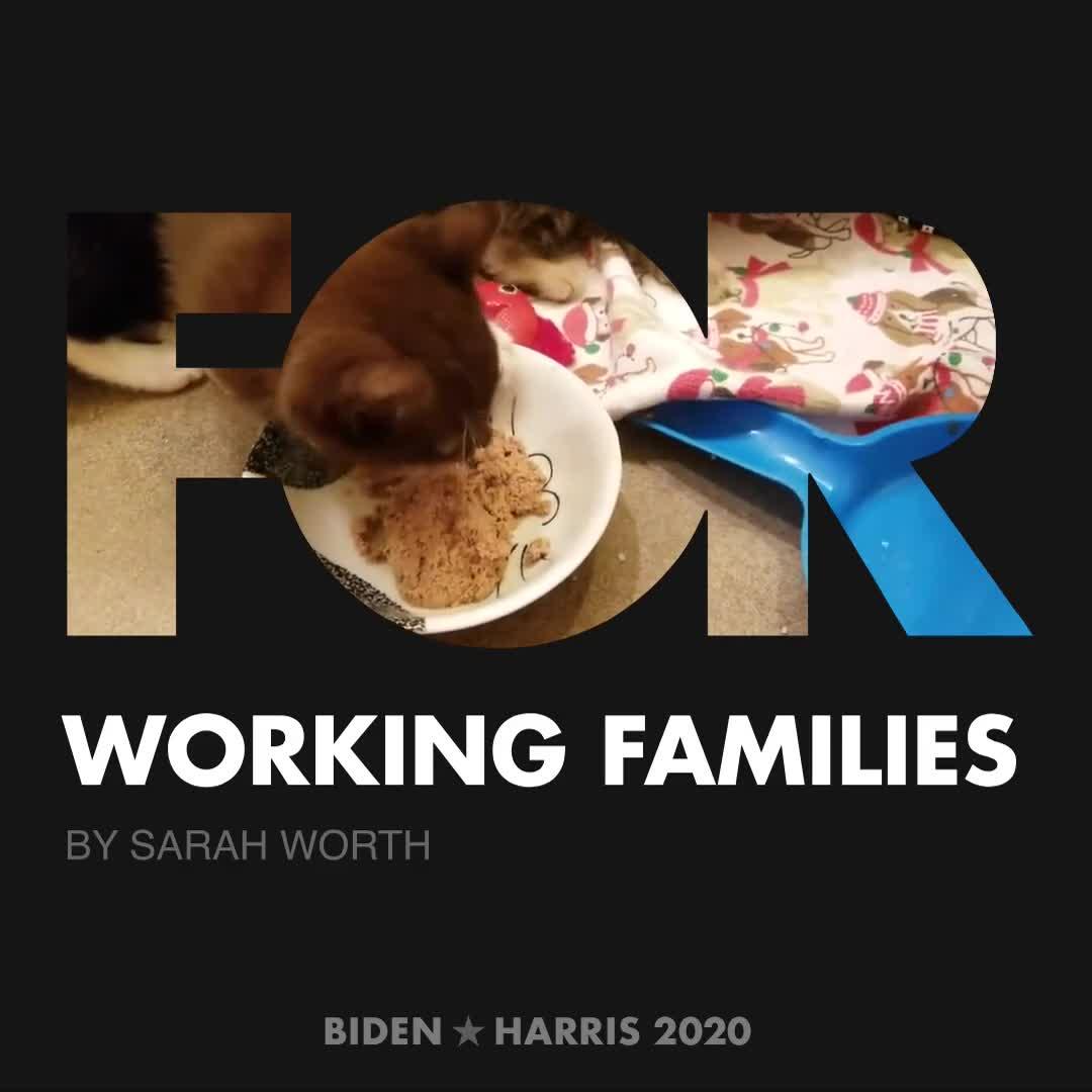 CreativesForBiden.org - Working Families artwork by Sarah Worth