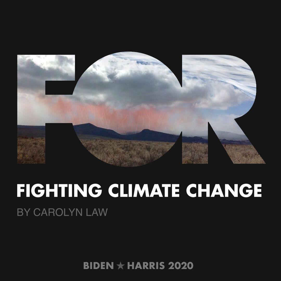 CreativesForBiden.org - Fighting Climate Change artwork by Carolyn Law