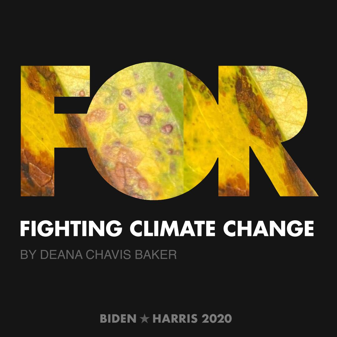 CreativesForBiden.org - Fighting Climate Change artwork by Deana Chavis Baker