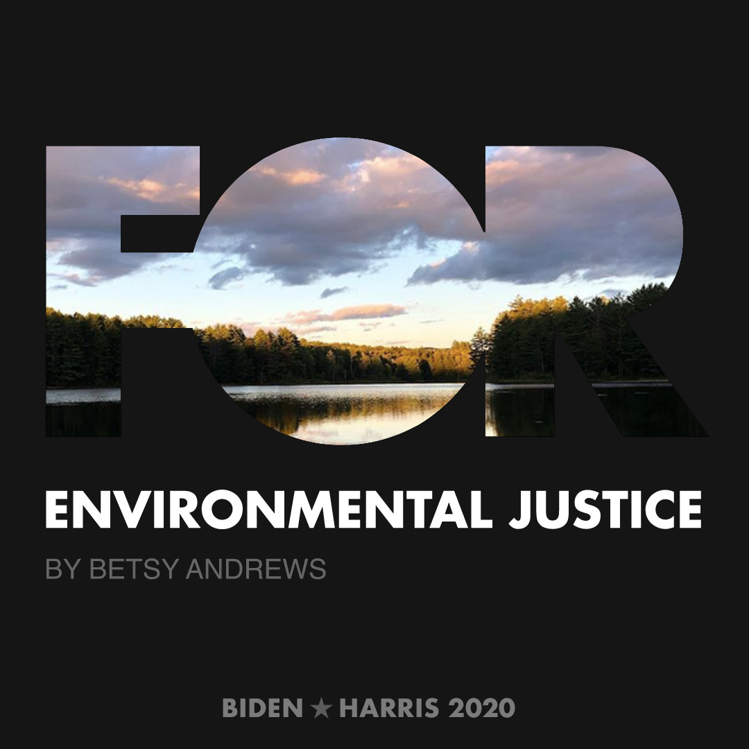 CreativesForBiden.org - Environmental Justice artwork by Betsy Andrews