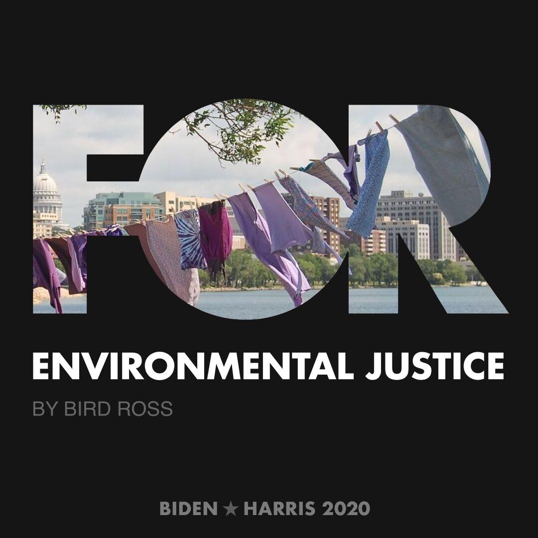 CreativesForBiden.org - Environmental Justice artwork by Bird Ross