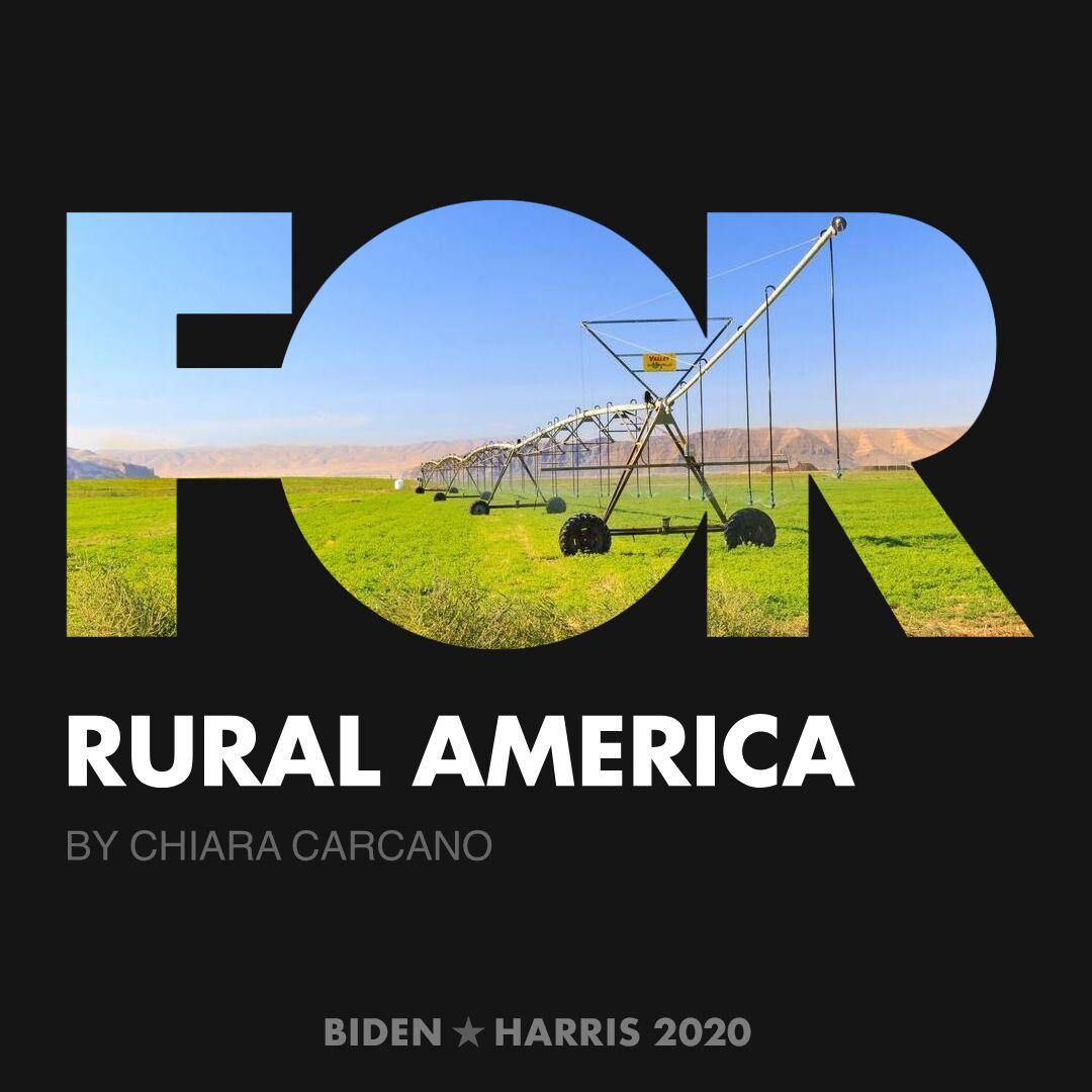 CreativesForBiden.org - Rural America artwork by Chiara Carcano