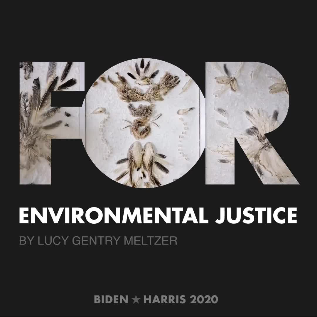 CreativesForBiden.org - Environmental Justice artwork by Lucy Gentry Meltzer
