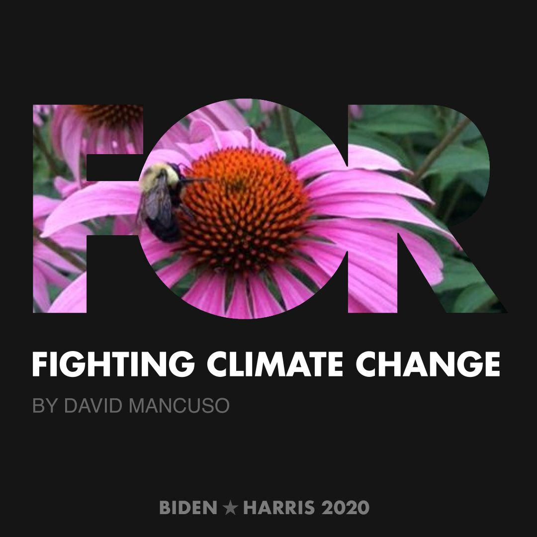 CreativesForBiden.org - Fighting Climate Change artwork by David Mancuso