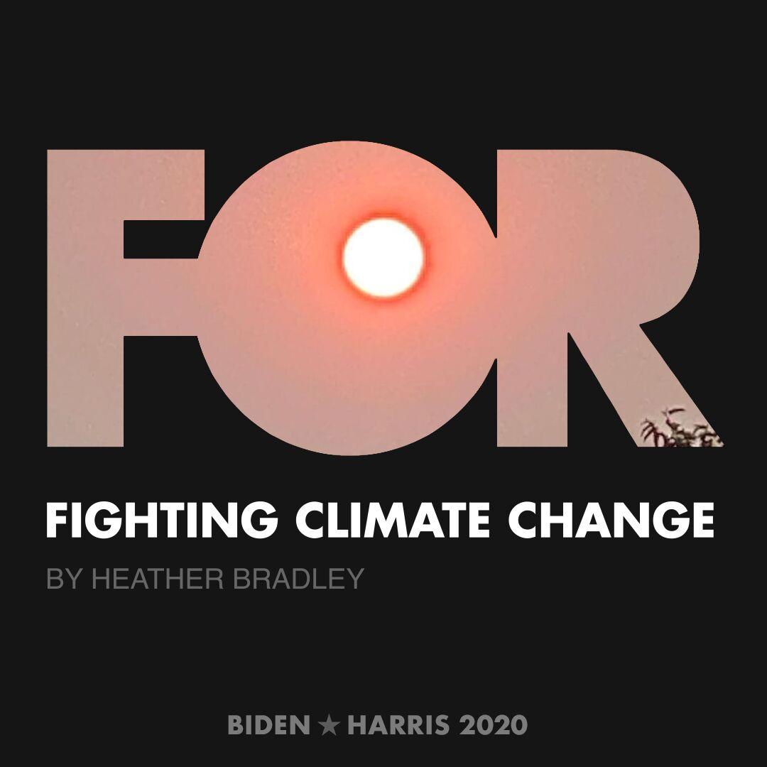 CreativesForBiden.org - Fighting Climate Change artwork by Heather Bradley