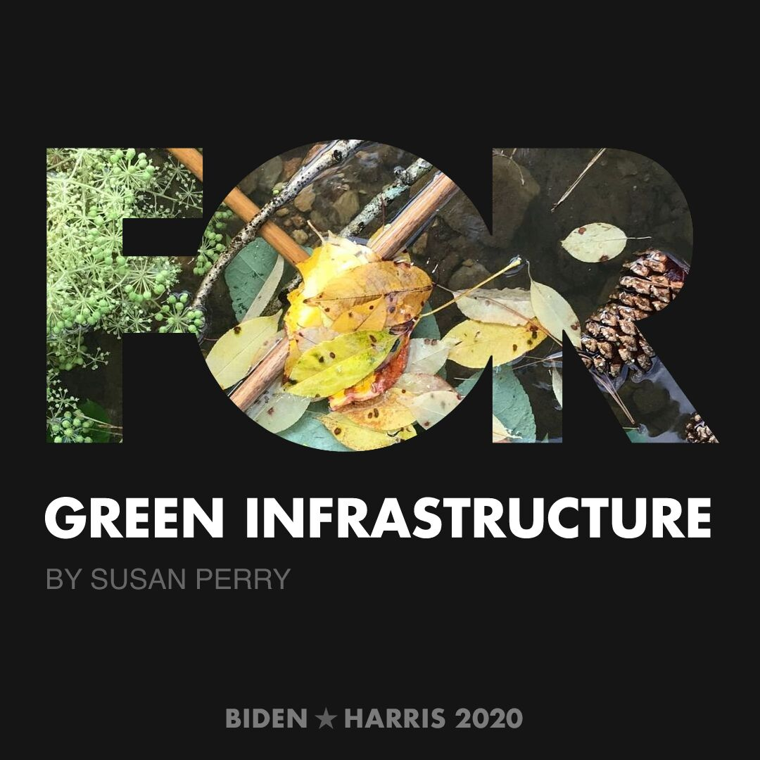 CreativesForBiden.org - Green Infrastructure artwork by Susan Perry