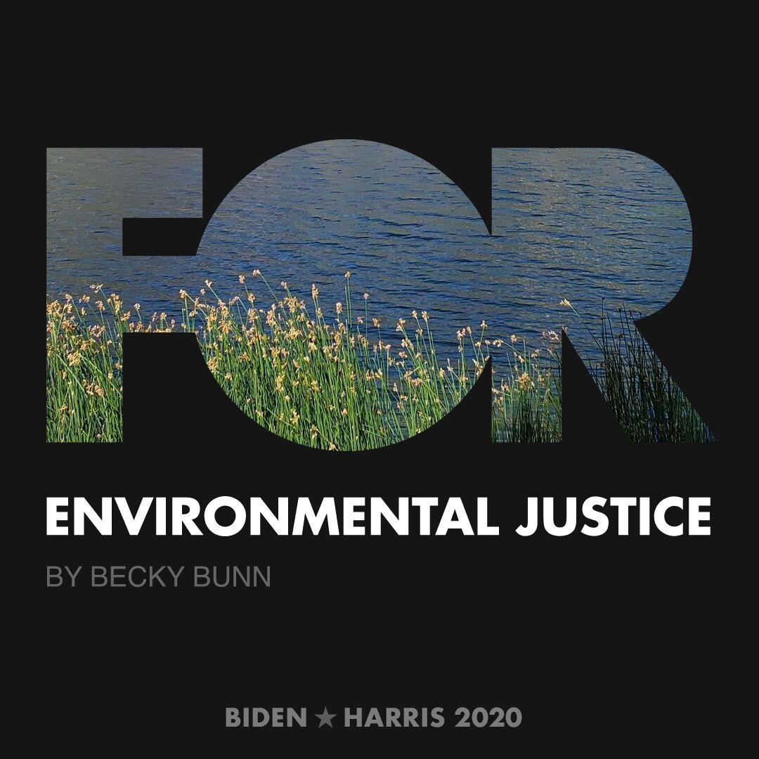 CreativesForBiden.org - Environmental Justice artwork by Becky Bunn