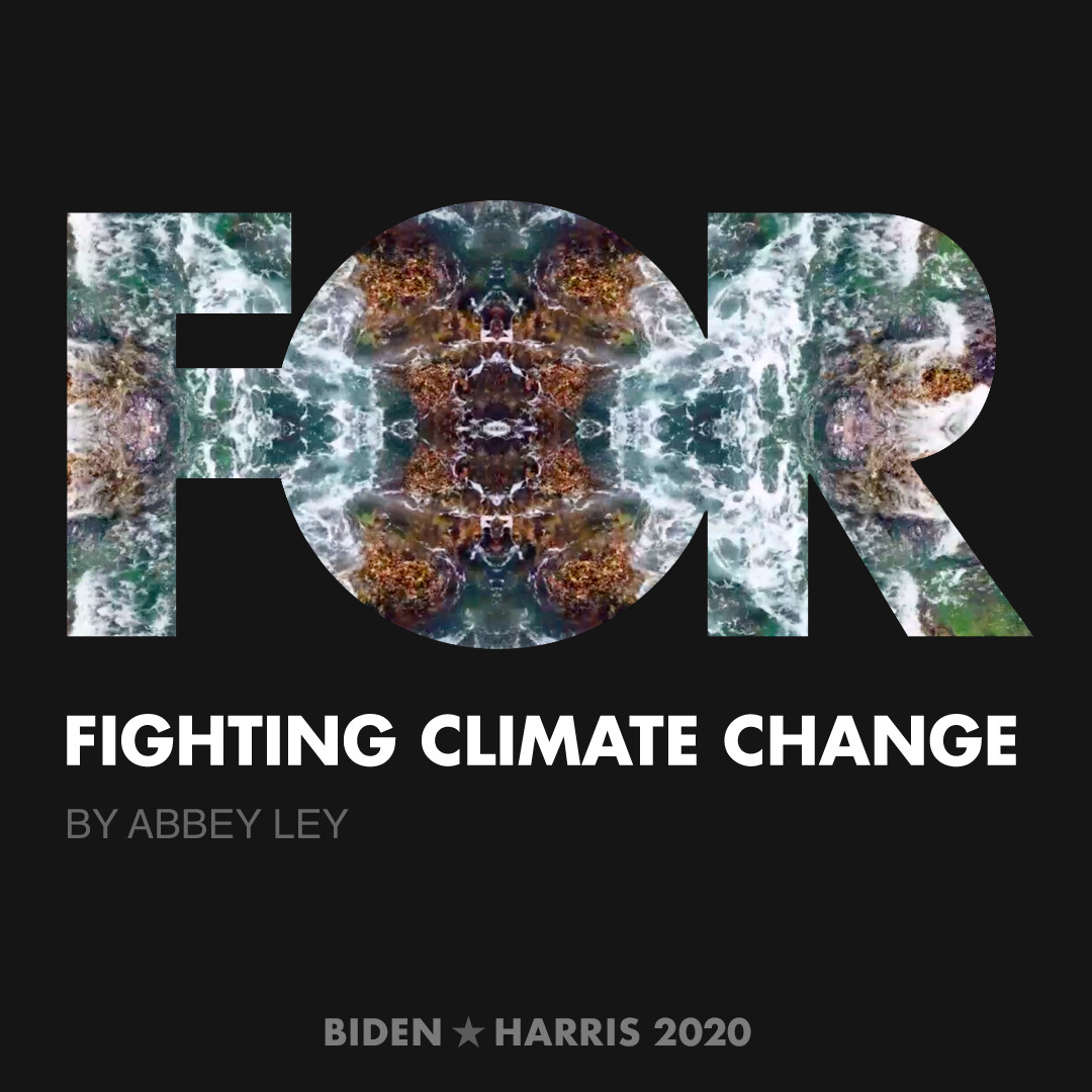 CreativesForBiden.org - Fighting Climate Change artwork by Abbey Ley