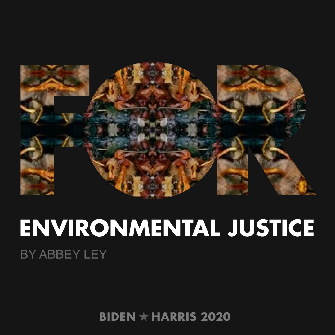CreativesForBiden.org - Environmental Justice artwork by Abbey Ley